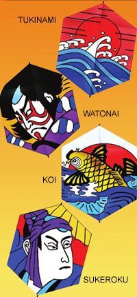 Kabukirokhi